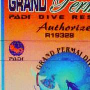 grand permai padi dive resort